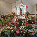 Our Lady of Guadalupe ~&nbsp; <div>  Nuestra Virgen de Guadalupe </div> photo album thumbnail 5